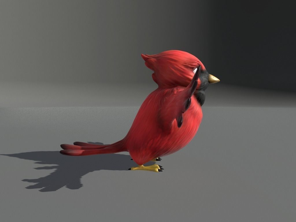 003 cardinal-cartoon-bird-3d-model-low-poly-obj-fbx-dae-mtl