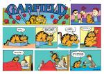 garfield cover