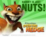 over-the-hedge-hammy 1280