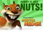 over-the-hedge-hammy 800