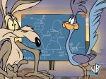 road runner wallpaper 800
