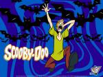 shaggy rogers cartoon 800