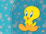 tweety wallpaper 1024